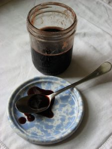 Elderberry & Rose Hip Syrup