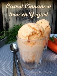 Carrot Cinnamon Frozen Yogurt | Recipes to Nourish
