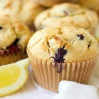 Grain Free Blueberry Muffins {Protein-Packed}