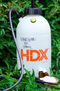Homemade vinegar weed sprayer bottle.