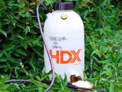 Chemical Free Natural Weed Killer