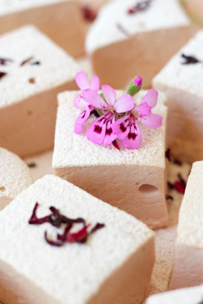 Large square cut homemade marshmallows with dried hibiscus blossoms.
