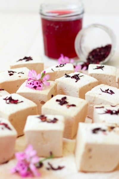 Hibiscus herbal tea and square cut homemade marshmallows with dried hibiscus blossoms.