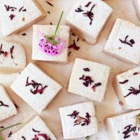 Vitamin C Hibiscus Rose Hip Marshmallows