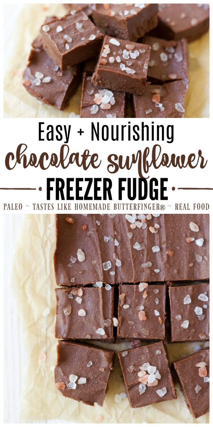 This easy nourishing Chocolate Sunflower Freezer Fudge is naturally sweetened, simple to make, full of real food ingredients and tastes like homemade Butterfinger® in fudge form! | Recipes to Nourish | Gluten-free desserts | Paleo desserts | Paleo fudge | real food desserts | Healthy treats || #healthytreats #paleodesserts